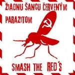 zscp-str4